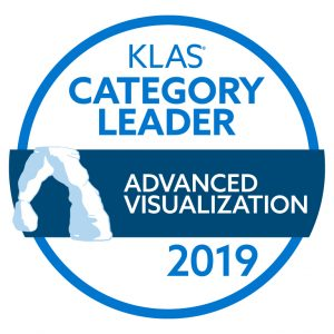 2019 KLAS Category Leader logo.
